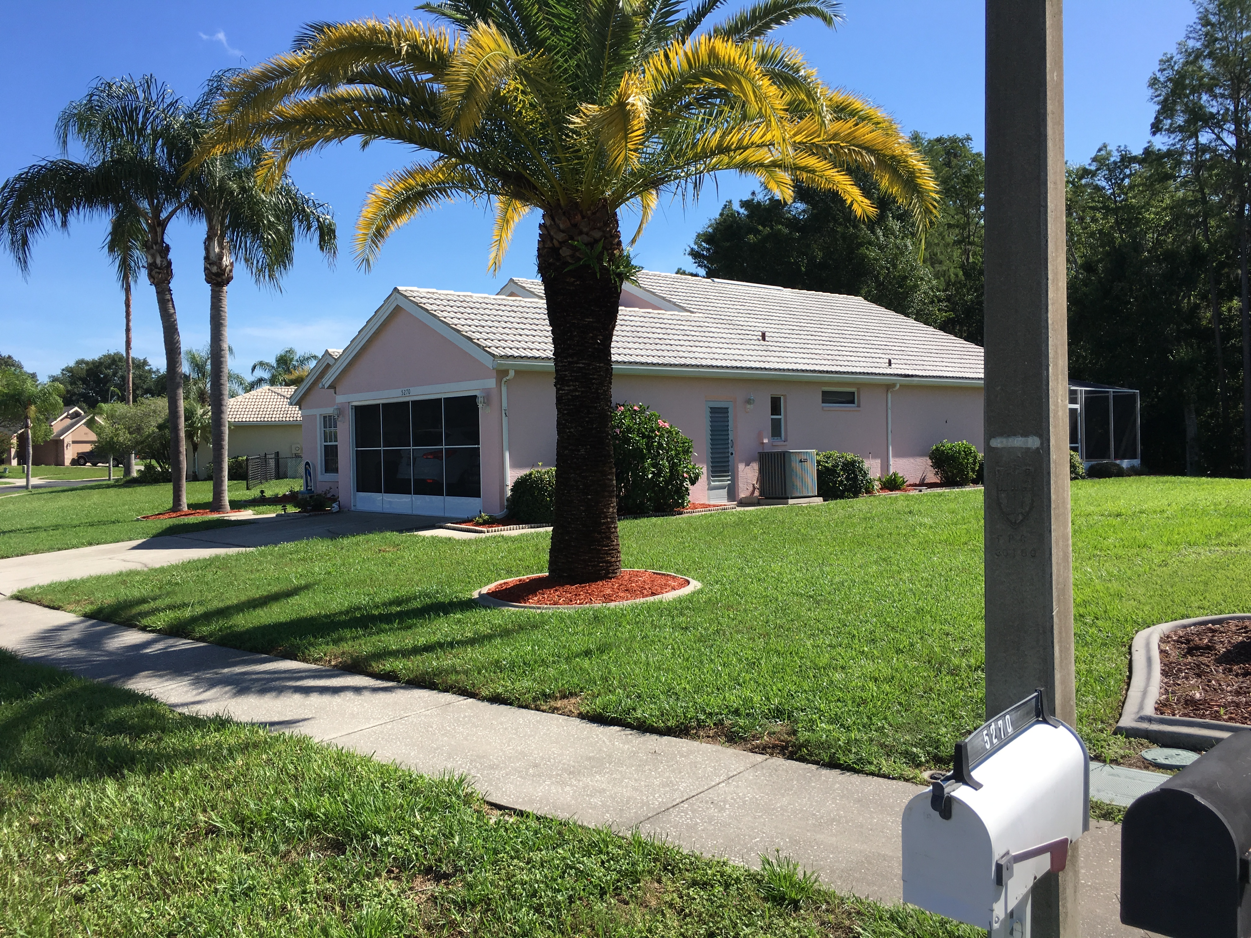 roof-cleaning-pressure-washing-new-port-richey.jpg